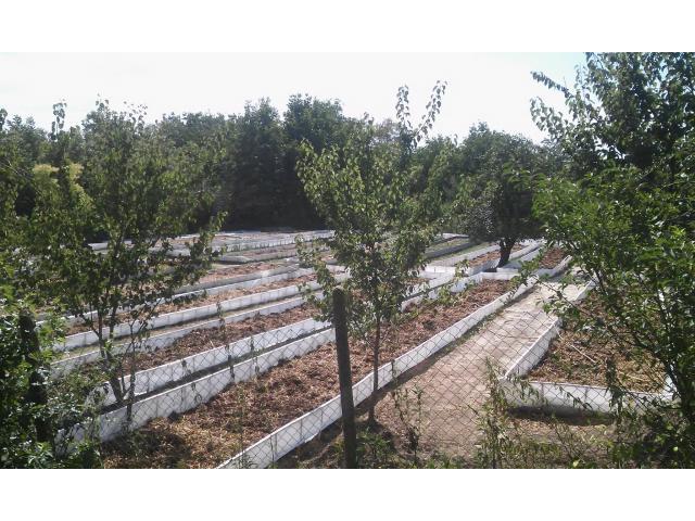 Биохумус от калифорнийски червей, почвени смеси